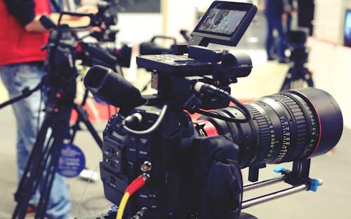 VIDEO DIRECTORY | POLITICS